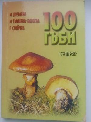100 ГЪБИ, М. Друмева, М. Гьошева-Богоева, Г. Стойчев