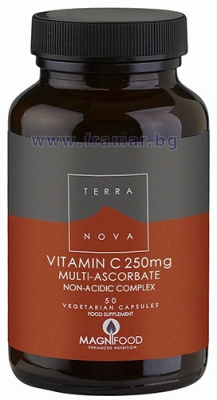 ВИТАМИН Ц КОМПЛЕКС 250 мг. * 50 капсули