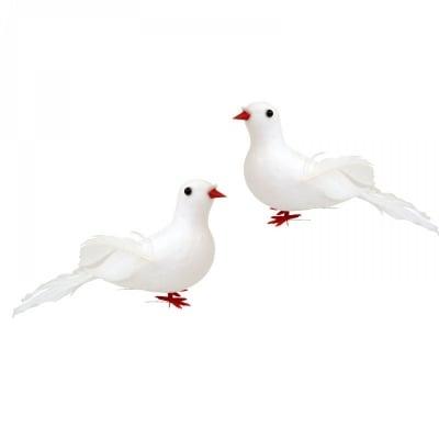 Гълъби - 2 броя, COSMOPOLIS