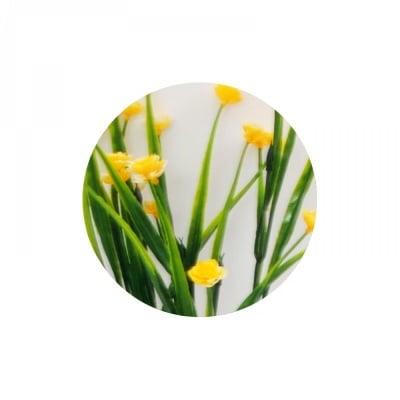 Букет с цветчета №2