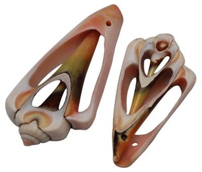 Морски раковини 44~56x22~28x7 мм дупка 2 мм -6 броя ~45 грама