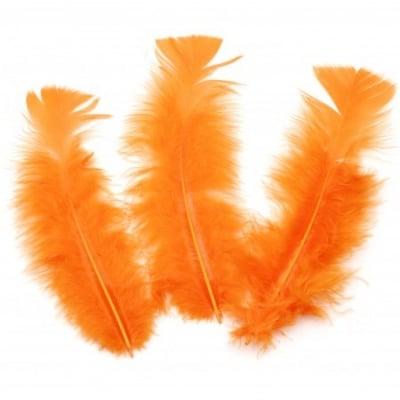 Перо 120~170x35~40 мм оранжево тъмно -10 броя