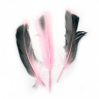 Перо 104~140x20~31 мм розово черно -10 броя