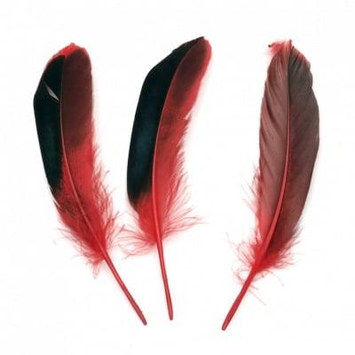Перо 104~140x20~31 мм червено черно -10 броя