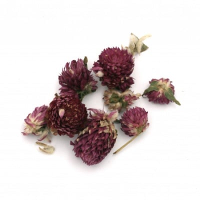Сухи цветя за декорация цвят лилав -20 грама