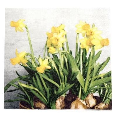 Салфетка HOME FASHION 33x33см трипластова Narcissus -1 брой