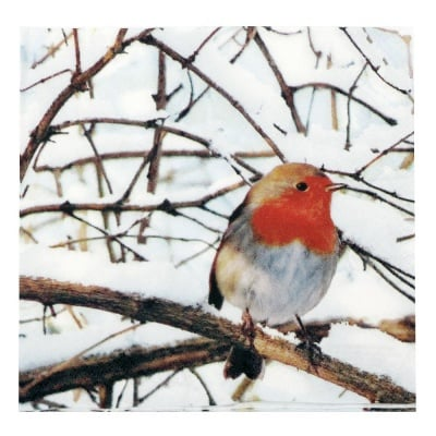 Салфетка HOME FASHION 33x33см трипластова Robin in a Winter Tree -1 брой