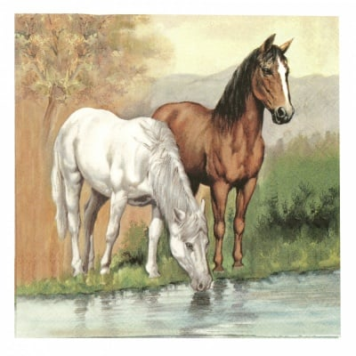 Салфетка за декупаж Ambiente 33x33 см трипластова Horses -1 брой