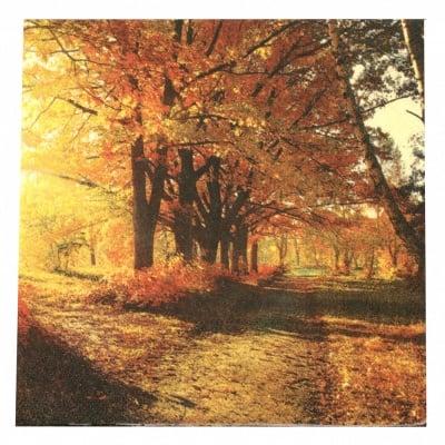 Салфетка за декупаж Ambiente 33x33 см трипластова Autumn Park