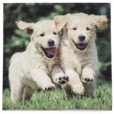 Салфетка ti-flair 33x33см трипластова Happy Puppies -1 брой