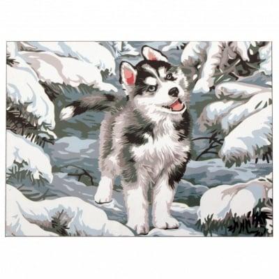 Комплект за рисуване по номера 20x30 см -Куче в снега -платно с клинова подрамка и схема,бои и 3 броя четки