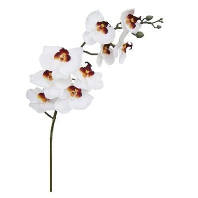 Орхидея бяла 90см.