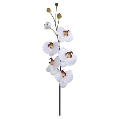 Орхидея бяла 86см.