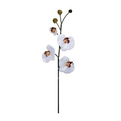 Орхидея бяла 63см.
