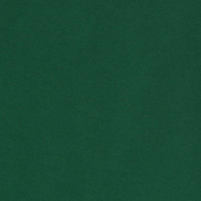 Фото картон гладък/мат, 300 g/m2, А4, 1л, елхово зелен