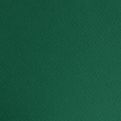 Фото картон едностр.оцв., 220 g/m2, 50 x 70 cm, 1л, елхово зелен