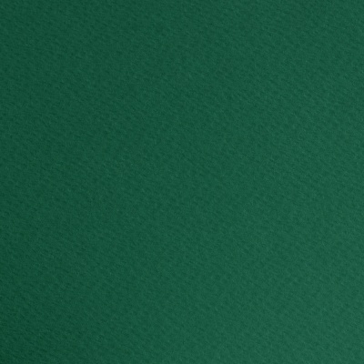 Фото картон едностр.оцв., 220 g/m2, 70 x 100 cm, 1л, елхово зелен