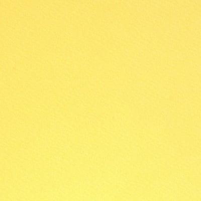 Фото картон едностр.оцв., 220 g/m2, 70 x 100 cm, 1л, лимонено жълт