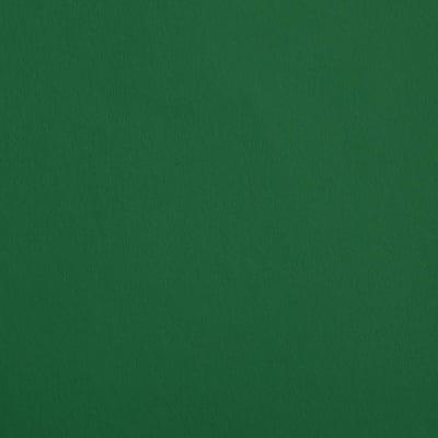 Крафт картон, 220 g/m2, А4, 100л в пакет, елховозелен
