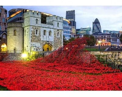 Пъзел художествен WENT, Tower of London, 40 части