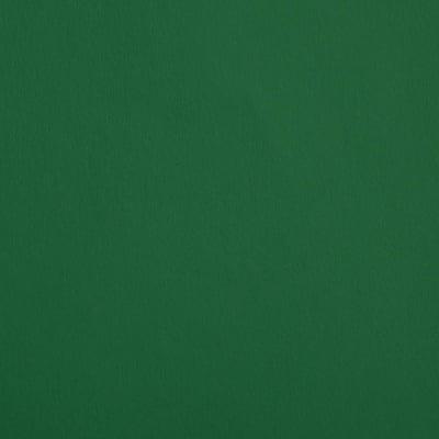 Цветен картон, 130 g/m2, 50 x 70 cm, 1л, елхово зелен