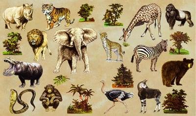 Декупажна хартия, 60 gr/m2, 33 x 48 cm, 1л, Африка