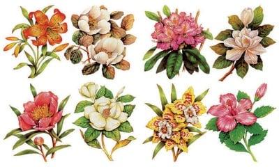 Декупажна хартия, 60 gr/m2, 33 x 48 cm, 1л, Цветя