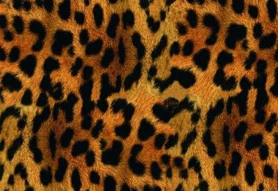 Декупажна хартия, 60 gr/m2, 33 x 48 cm, 1л, Леопардова кожа
