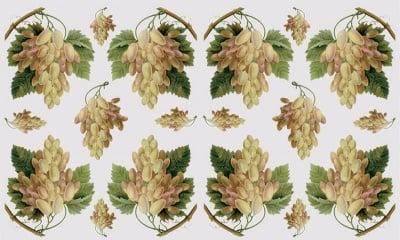 Декупажна хартия, 60 gr/m2, 33 x 48 cm, 1л, Лози и грозде