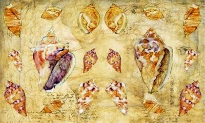 Декупажна хартия, 60 gr/m2, 33 x 48 cm, 1л, Раковини