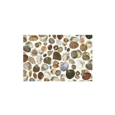 Декупажна хартия с мотиви, 40 g/m2, 50 x 70 cm, 1л, Миди