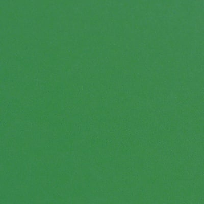 Фото картон гладък/мат, 300 g/m2, 50 x 70 cm, 1л, елхово зелен