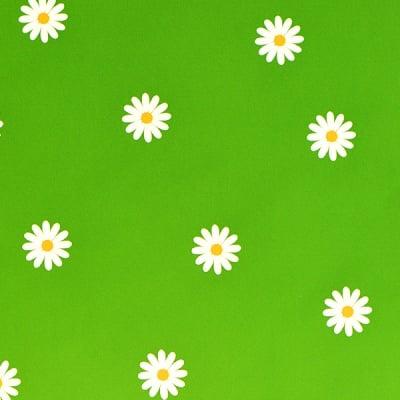 Варио картон, 300 g/m2, 50 x 70 cm, 1л, зелен на маргаритки
