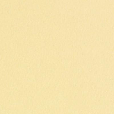 Фото картон едностр.оцв., 220 g/m2, А4, 1л, светъл велур