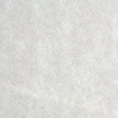 Хартия за рисуване с маслен пастел, 49 g/m2, 50 x 70 cm, 1л, бяла
