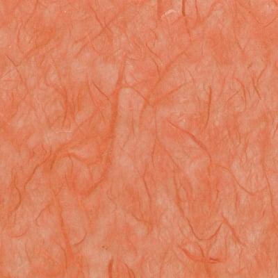Хартия копринена с влакна, 25 g/m2, 50 x 70 cm, 1л, кокосова