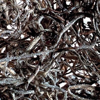 Мъх от Джунглата, Jungle moss, 25 g, натурален