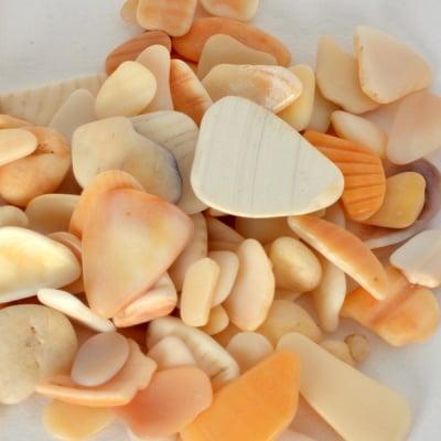Парченца мидени черупки, 10 - 15 mm, 100 g, естествено бели