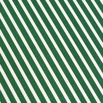 Варио картон, 300 g/m2, 50 x 70 cm, 1л, бял в зелено рае