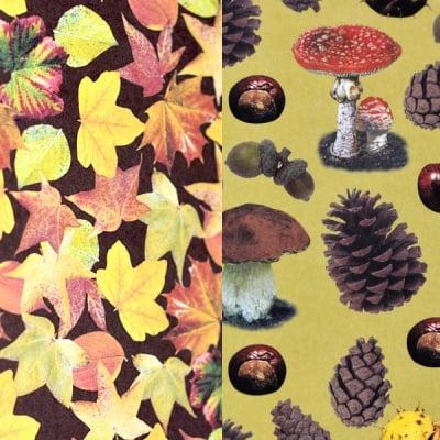 Варио картон, 300 g/m2, 50 x 70 cm, 1л, листа и иглички/листопад