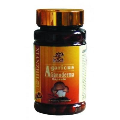 АГАРИКУС ГАНОДЕРМА ЛУЦИДУМ - засилва защитните сили на организма - капсули 250 мг. х 90, TNT 21