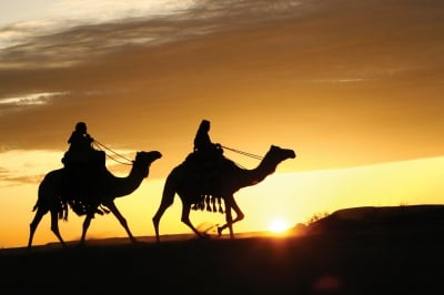 25 арабски поговорки, които ще ви разкрият непозната мъдрост