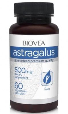 АСТРАГАЛУС - облекчава стреса и повишава имунитета - капсули 500 мг. х 60, BIOVEA
