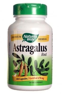 АСТРАГАЛ КОРЕН - подпомага метаболизма и оздравителните процеси - капсули 470 мг. х 100, NATURE'S WAY