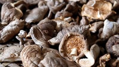 Стрити на прах гъби подобряват здравето на сърцето