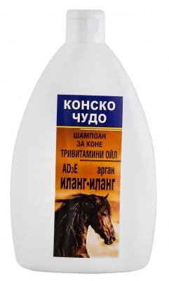 ШАМПОАН ИЛАНГ ИЛАНГ с Арганово масло - при себорея и сърбяща кожа, 500 мл