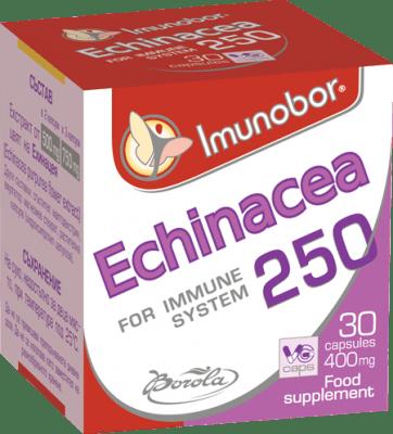 ИМУНОБОР ЕХИНАЦЕЯ - имуностимулатор на дихателната система - капсули 400 мг. х 30, BOROLA