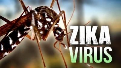 Какво не ни се казва за вируса Зика?