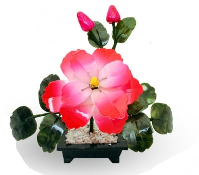 ФЪН ШУЙ ДРЪВЧЕ ПИОН (МАЛКО) - символ на страстта и любовта, COSMOPOLIS