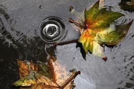 Притча за вярата в Бог и дъжда, за който не сме готови